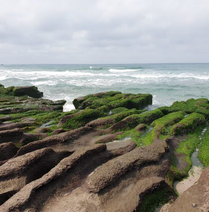浪漫北岸 淨灘聯誼